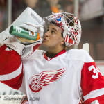 Petr Mrazek terrific in first playoff start