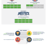 The Unstoppable Growth of Fantasy Sports [Infographic]